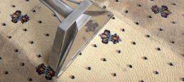 AB-Cleaning-tapijtreinigen